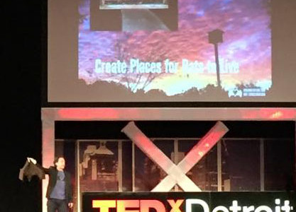 Rob Mies of the Organization for Bat Conservation shows the audience the world's largest bat at TEDx Detroit.