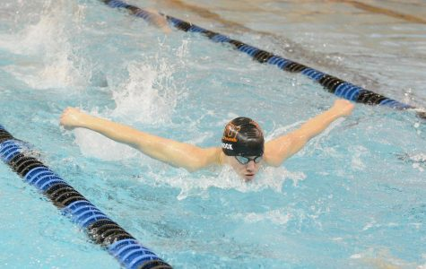 Boys prepare for another record-breaking swim season
