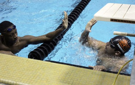 Swim team makes a splash at counties