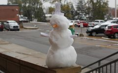 Alternate Text Not Supplied for snowman (1).