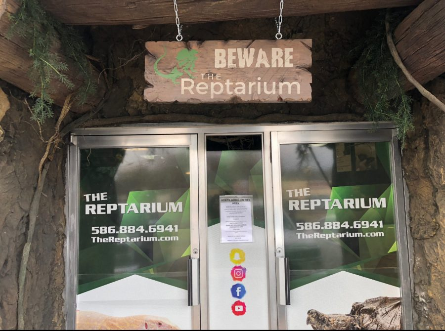 The Reptarium shows snakes don't 'byte'
