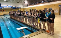 Diving into competition