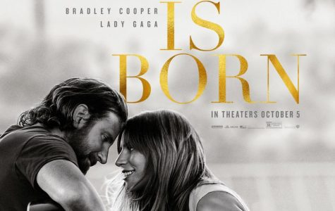 'A Star Is Born' steals hearts