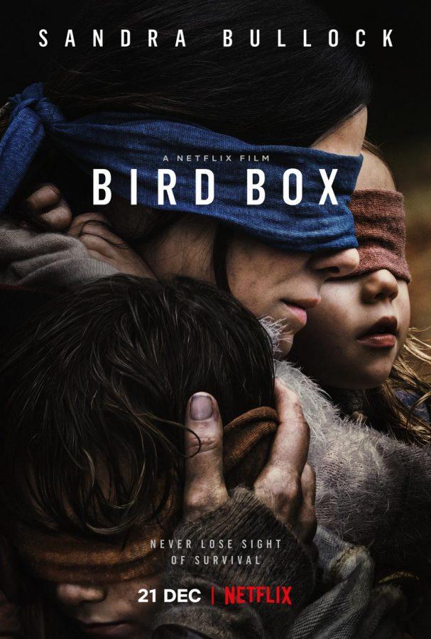 Bird+Box
