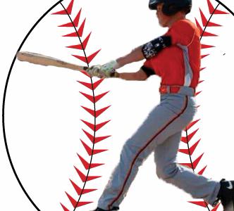 Baseball trip to Florida is a 'Homerun'