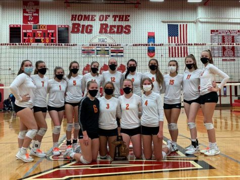 Volleyball District Champions